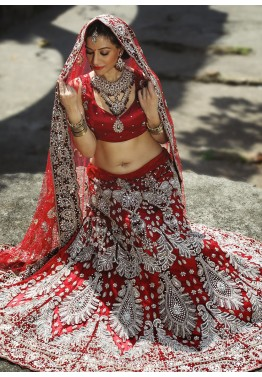 Red Net Bridal Embroidered Lehenga Choli